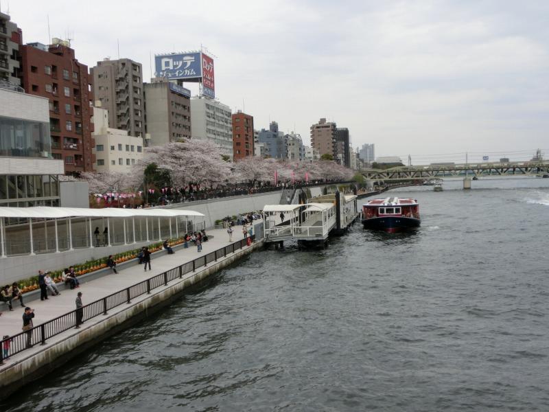 隅田川で船に乗る