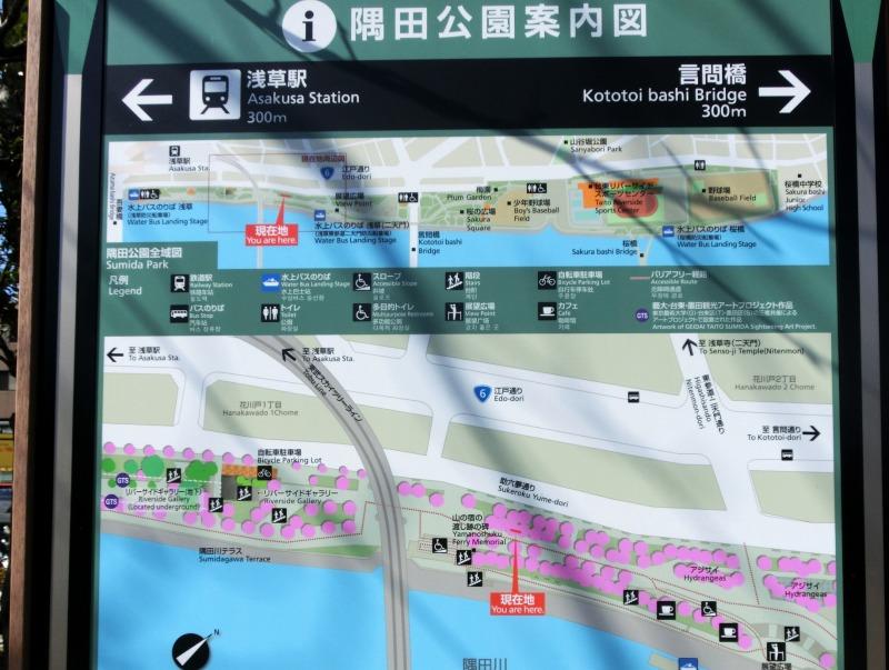 隅田川の桜の案内板