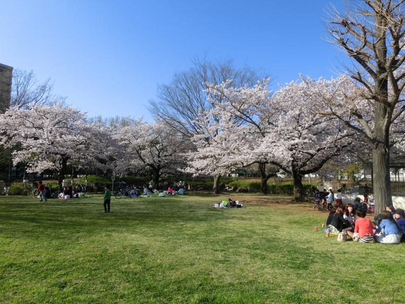 亀戸中央公園 A地区