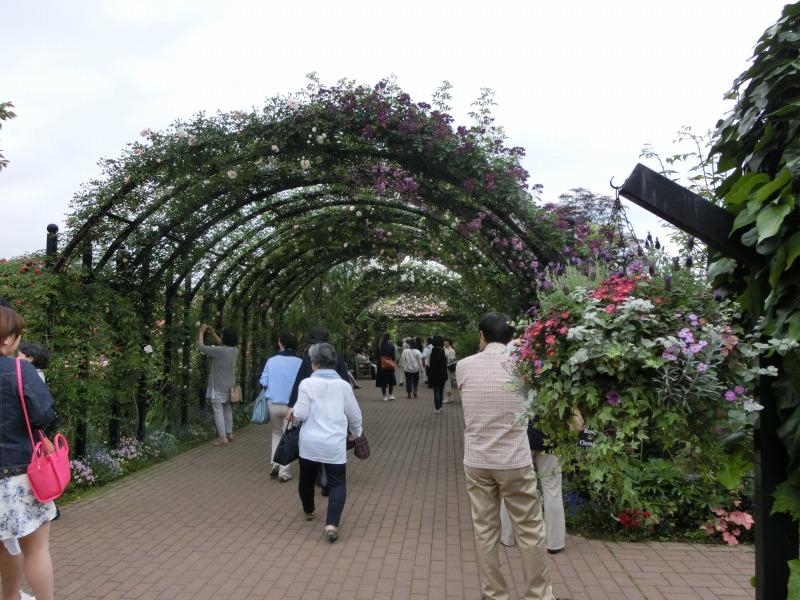 横浜イングリッシュガーデンのバラのアーチ