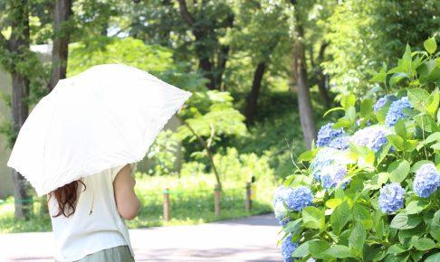 日傘を使って