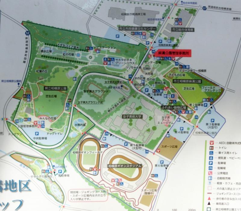 麻溝公園周辺図