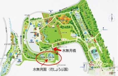 アクセスの地図