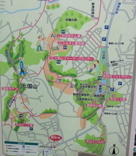 町田ダリア園周辺地図