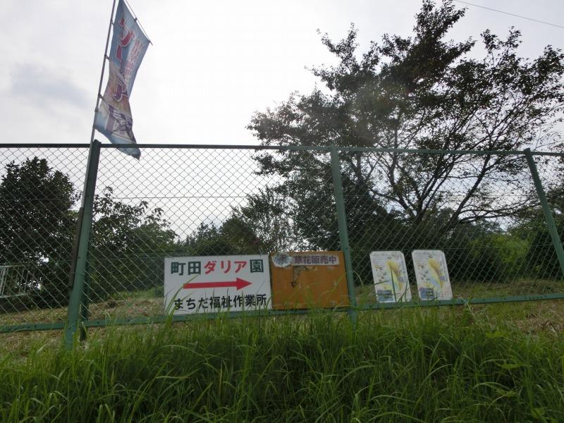 町田ダリア園へ