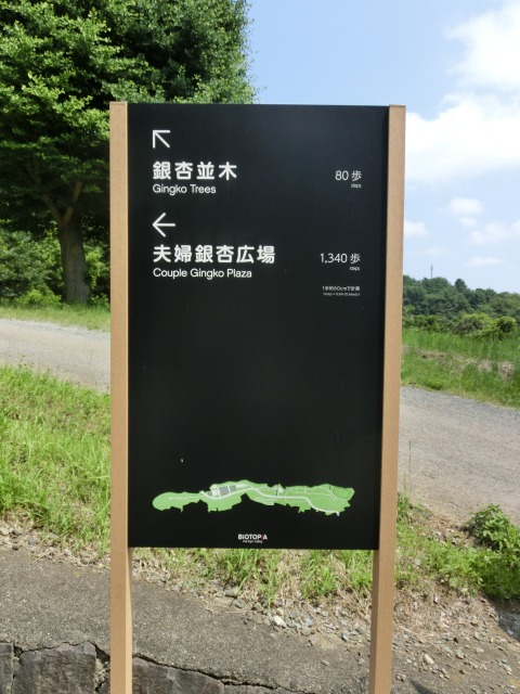 道案内の看板